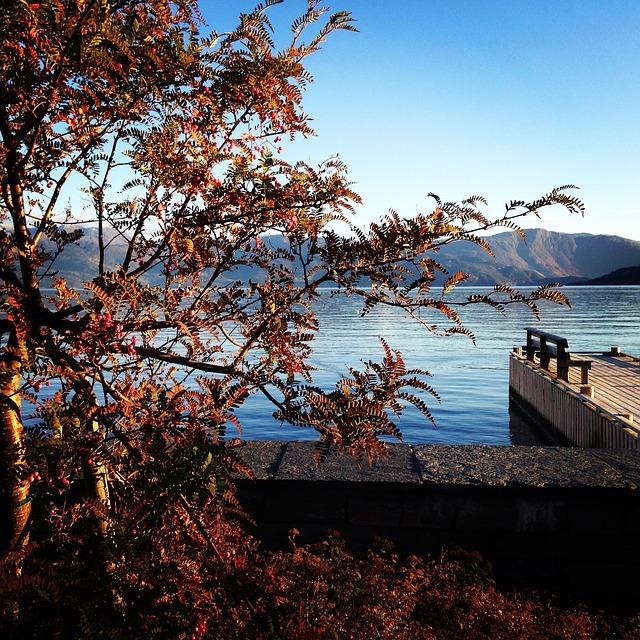Autumn Mountain Norway Lake Landscap Brew Bench